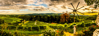 Panorama view of Vineyards in summer in Slovenia. Heart shaped road in Spicnik