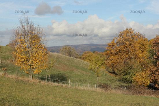 Odenwald landscape in autumn