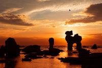 Wild swedish coast at sunset