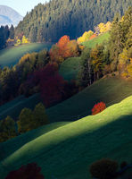 Hills. Light and shadow. Autumn morning mountain village environs with grassy hills, small groves in first sun light, deep shadows on slopes. Picturesque seasonal and countryside beauty concept scene.