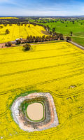 Panoramic aerial views of canola and grazing fields in rural Australia