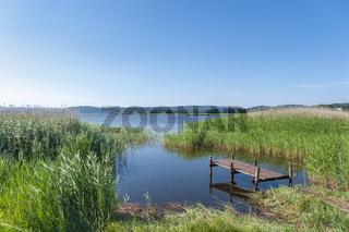 Landschaft am Selliner See bei Baabe