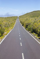 Road on Paul da Serra plateau in Madeira