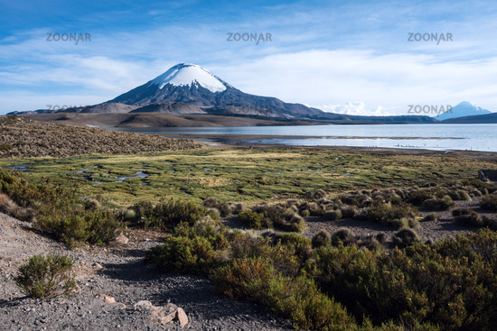 Snow capped Parinacota Volcano reflected in Lake Chungara, Chile