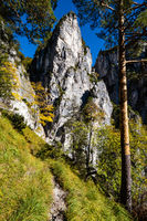 Sunny colorful autumn alpine scene. Peaceful rocky mountain view from hiking path near Almsee lake, Upper Austria.