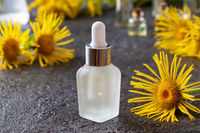 A bottle of elecampane essential oil and flowers
