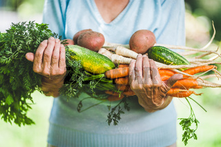 Senior woman holding fresh crop from her garden