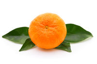 Ripe tangerine with leafs isolated on white background