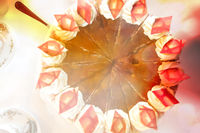 Top view on a plum-cream-cake with decoration of bright chocolate rhombuses