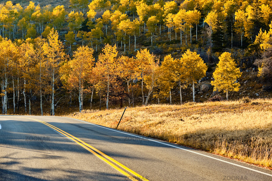 Highway at autumn in Colorado, USA.