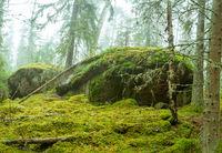 Ycke nature reserve
