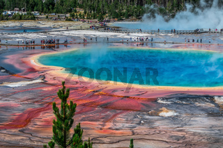 World Famous Grand Prismatic Spring in Yellowstone National Park