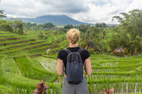 Caucasian female tourist wearing small backpack looking at beautiful green rice fields and terraces of Jatiluwih on Bali island