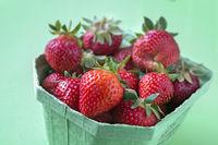 Strawberry variety