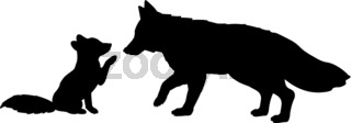 Silhouette of fox and little fox
