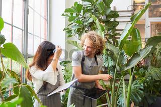 Florist als Azubi bei einer Prüfung zwischen Pflanzen