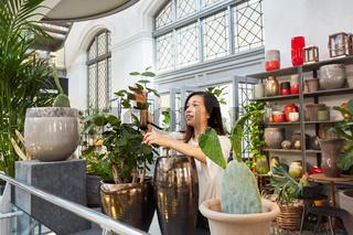 Floristin beim Dekorieren von Pflanzen und Vasen