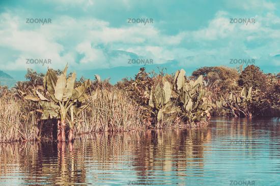 beautiful Madagascar wilderness landscape
