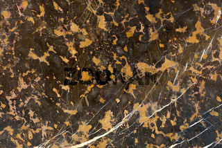 Real natural .' Black  Gold '  texture pattern.