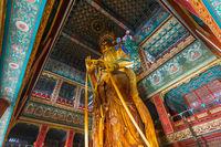 Giant Buddha in Lama Yonghe Temple in Beijing China
