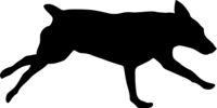 Doberman pinscher dog silhouette on a white background