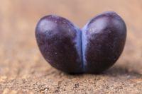 Herzförmige Pflaume auf dunklem Holz
