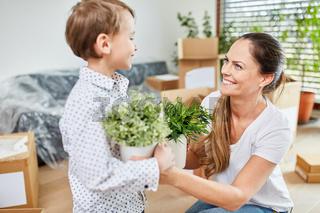 Mutter und Sohn mit Pflanzen beim Umzug
