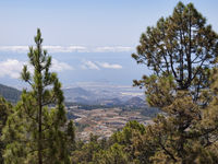 View of Tenerife landscape from Teide access road