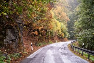 Herbst im Strassenverkehr erhöte Achtung