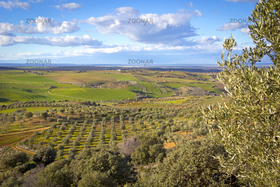 Typical landscape in the Extremadura (Spain)