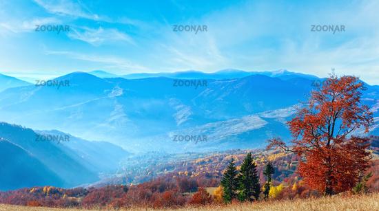 Carpathian autumn panorama