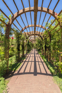 Stine brick pathway under a wooden arbor at a wedding venue on a sunny day