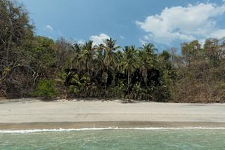 tropical palm beach on the cebaco island panama
