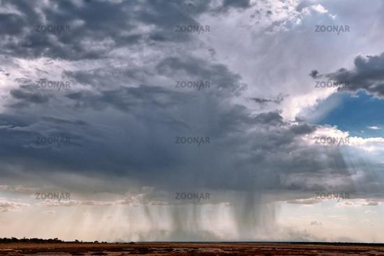 heavy rain at Etosha National Park, Namibia