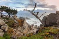 Dramatic coastline views as seen from iconic 17 Mile Drive near Pebble Beach and Pacific Grove.