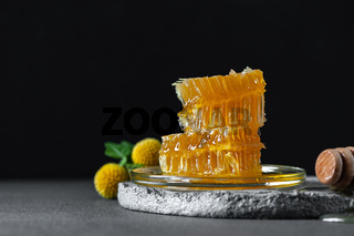 Honeycombs on a concrete table on a black background. Image with free space for text.