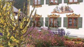 Blühender Vorgarten in Oberbayern