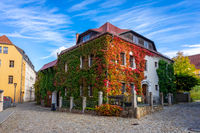 Beautiful streets of the historical part of the old town in a fall day. A house twined with ivy.