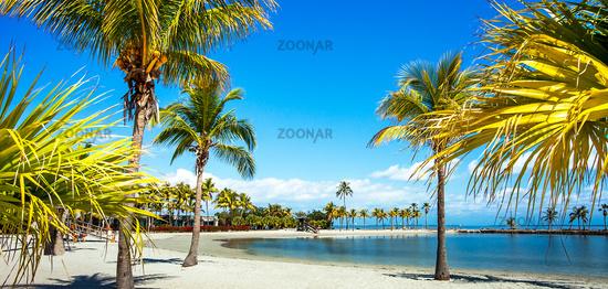 The Round Beach at Matheson Hammock County Park Miami Florida