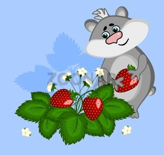 A gray hamster with a berry in the paws stands in strawberry bushes. Illustration on a blue background.