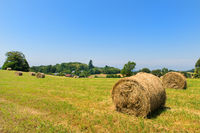 Agricultural landscape with round hay bale
