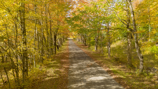 Desolate country road has leaves falling in autumn season New York