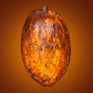 Cocoa fruit on graphic duotone background.