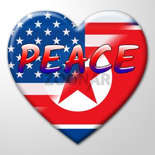 American North Korea Nuclear Peace Flag 3d Illustration