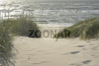 Fischland Strandzugang