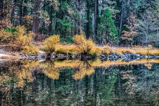 beautiful reflections along river in yosemite park