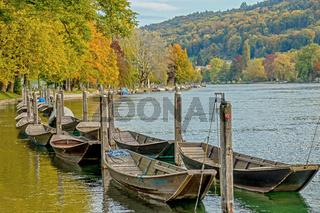 Herbst am Hochrhein in Schaffhausen, Schweiz