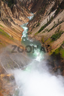 The Lower Falls in Yellowstone National Park