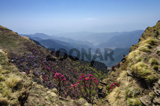 Colourful Valley seen from Tungnath Peak, Garhwal, Uttarakhand, India