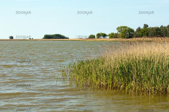 Landscape 009. Fischland Darss Zingst. Germany